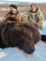 Brown Bear Hunting Alaska