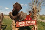 Ohio Premier Trophy Outfitters, Turkey Hunting Ohio