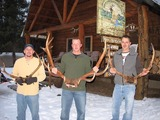 Silver Spur Outfitters & Lodge, Elk Hunts Idaho
