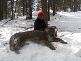 Wemple Outfitting, Mountain Lion Hunt