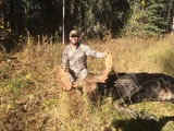 Udells Guiding and Outfitting, Moose Hunting With Udell
