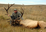 Udells Guiding and Outfitting, Elk hunting Alberta Canada