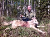 Boss Outfitting, Spring white wolf hunt