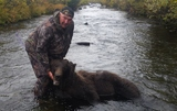 Alaska Big Game Hunting, Alaska Bear Hunts
