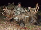 Alaska Big Game Hunting, AK Moose Hunting