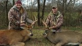 Backwoods Whitetail Hunts, Nice Bucks