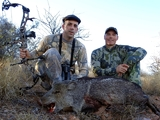 Arizona Javelina Hunting with bow