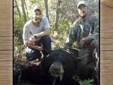 Bryce Outfitting, Black Bear Hunting