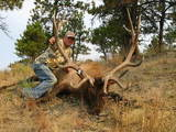 Archery Elk Hunts