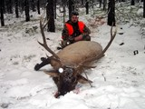 Montana Rifle Elk Hunts