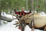 Montana Elk Hunt with Rifle 2013 Stockton Outfitters.