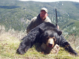 Montana Black Bear Rifle Hunting.