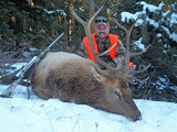 Rifle Elk Hunts
