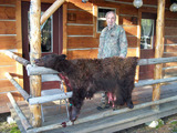 Stockton Outfitters, Nice Bear Skin