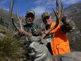 Hunt Mule Deer In Montana.