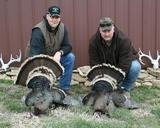 Merriam Turkey Hunting In Montana.