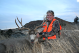 Bow Hunting Deer In Montana, Mule Deer Hunts Montana.