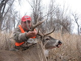 Great Whitetail 2010