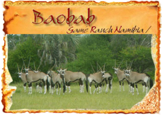 Baobab Game Ranch