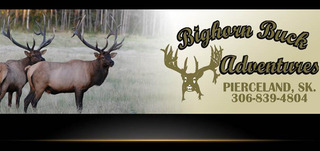 Big Horn Buck Adventures